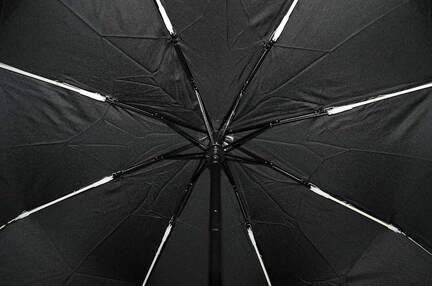 Женский зонт Elephant ( полный автомат ) арт. 18002-02