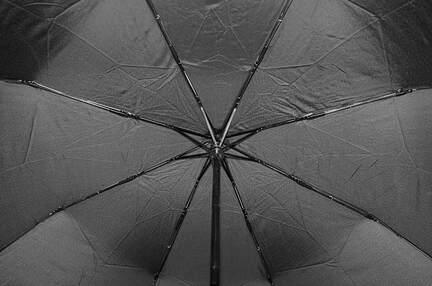 Мужской зонт Elephant ( полный автомат ) арт. 18004
