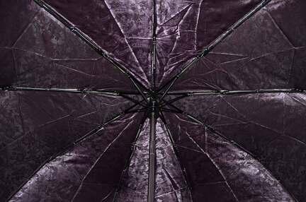 Женский зонт Sponsa ( полный автомат ) арт. 17021-03