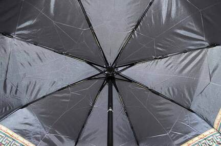 Женский зонт Sponsa ( полный автомат ) арт. 17069-02