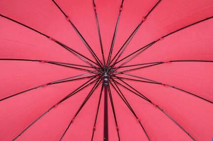 Женский зонт Три Слона ( полуавтомат ) арт. 1100-01